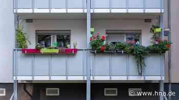 Garten-Tipps: Pflanzen auf dem Balkon – Diese Blumen sind ungeeignet - hna.de