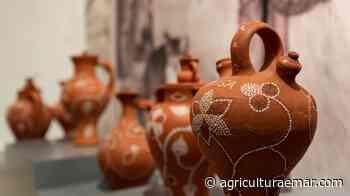 """Portalegre. Criada a Associação """"Saber Fazer"""" para salvaguarda das artes e ofícios tradicionais - AGRICULTURA E MAR ACTUAL - Agricultura e Mar Actual"""