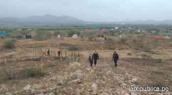 Santuario Bosque de Pómac en peligro por aumento de invasores en zona de amortiguamiento - LaRepública.pe