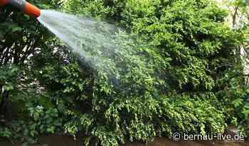 17-21 Uhr: Garten-Sprengverbote für den Raum Wandlitz - Bernau LIVE