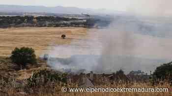 Arde el Cerro de los Pinos de Cáceres en su segundo incendio del año - El Periódico de Extremadura