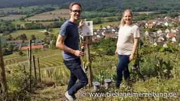 Wein-Caching durchs Kirbachtal: Eine Schnitzeljagd speziell für Weinliebhaber - Bietigheimer Zeitung