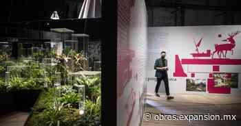 La arquitectura mexicana se hace presente en la Bienal de Venecia 2021 - Obras