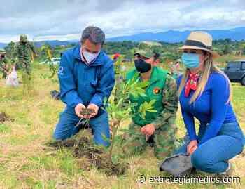Trabajo de restauración de ecosistemas en Chía y Montería - Extrategia Medios