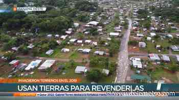 Denuncia intimidaciones de supuestos pastores por terrenos invadidos en La Chorrera - Telemetro