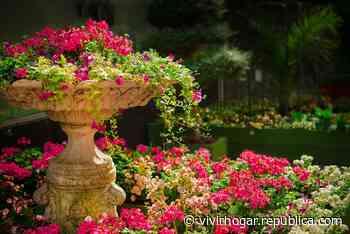 Trucos para decorar un jardín | Vivir Hogar - Republica.com
