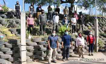 Transformaron más de mil neumáticos en huerta y jardín - El Tribuno.com.ar