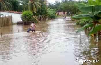 Barinas   80 familias afectadas por desbordamiento de caños en Pedraza - El Pitazo