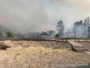 Se registra fuerte incendio forestal en San Juanito - Omnia