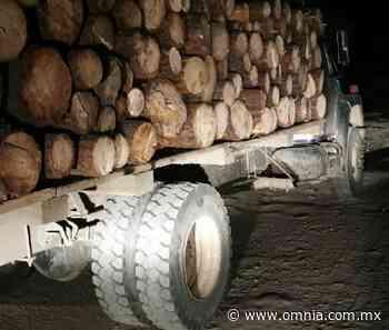 Refuerza SSPE operativos en San Juanito por tala clandestina de madera - Omnia