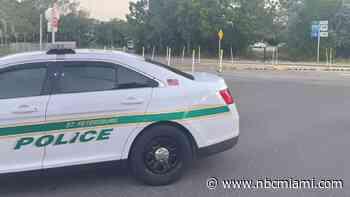 Body Found in Grass Fire at Sunshine Skyway Bridge Rest Area: Police