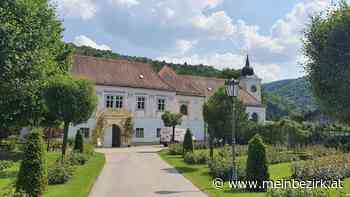 Willkommen im Rosen Garten Pitten - die zweitgrößte Rosengartenanlage Niederösterreichs - meinbezirk.at