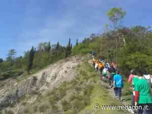 Vezzano: domenica 13 giugno alla scoperta delle colline tra Crostolo e Pinetina - Redacon