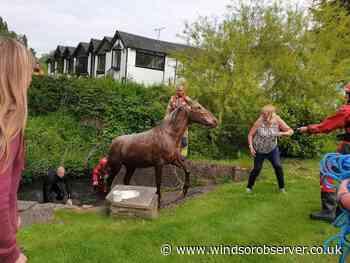 Windsor: Blind horse escapes paddock and falls into River Thames - Windsor Observer