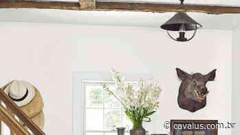 Cores de tinta branca iluminam qualquer espaço da sua casa - Cavalus