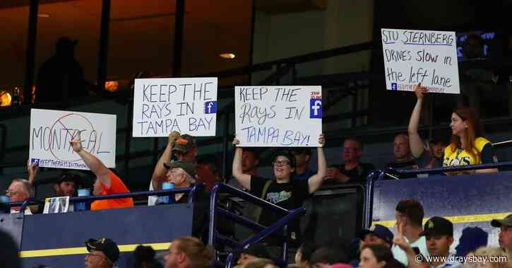 Roundtable: tell us why you are a Rays fan