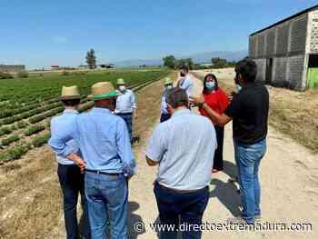 Begoña García visita las instalaciones de Biostevera en Villanueva de la Vera - Directo Extremadura