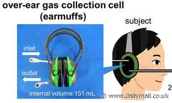 Scientists develop earmuffs can measure blood alcohol levels through the skin