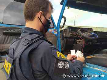 Altamira: Comprimidos de anfetaminas são apreendidos em caminhão na BR-230 - Blog do Zé Dudu