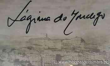 Em Dia de Portugal, celebre com Lágrimas de Portugal - Notícias de Coimbra