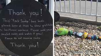 Rock snake at Melfort hospital includes work of elementary students and community members - northeastNOW