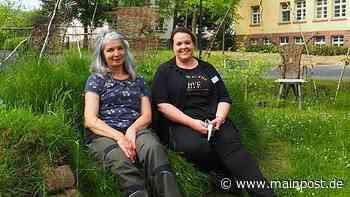 BKH Lohr: Wie durch eine Baustelle ein Schmetterlingsgarten entstand - Main-Post