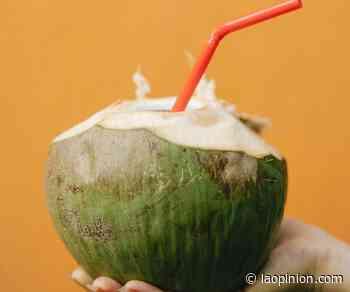 El agua de coco puede rehidratarte pero también causarte diarrea - La Opinión