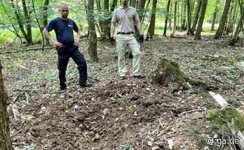 Meckenheim: Sprengung einer Granate sorgt für Sperrung der L261 - General-Anzeiger Bonn