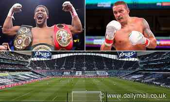 Anthony Joshua and Oleksander Usyk 'putting finishing touches to contract for September 25 clash'