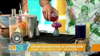 Kava Bar takeover at Blue Jay Listening Room in Jax Beach   River City Live - WJXT News4JAX