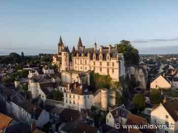 Dégustation « 7 vins 7 châteaux » Loches jeudi 22 juillet 2021 - Unidivers