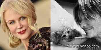 Fans Cannot Handle Nicole Kidman's Latest Instagram of Her Husband Keith Urban - Yahoo Lifestyle