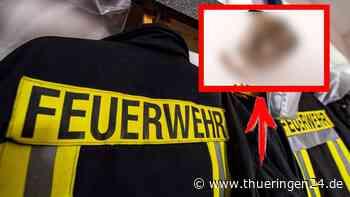 Sondershausen: Brand in Wohnung – kurios, was auf Herd stand - Thüringen24