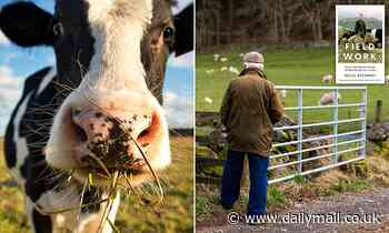 Our demand for £4 chickens and milk at 40p a pint is driving small farmers to despair and ruin
