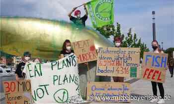 Protest zum Tag der Ozeane - Regensburg - Nachrichten - Mittelbayerische