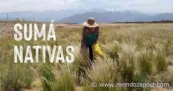 Campaña de Cervecería Quilmes para restaurar la cuenca del Río Mendoza - mendozapost.com