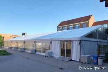 Vito zet grote tent voor examens (Hoogstraten) - Gazet van Antwerpen