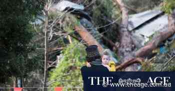 Warnings of extended power outages as wild weather clean-up begins