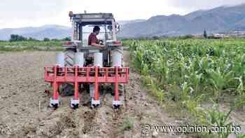 Tarpuy y Ch'ulla Parita, innovación agrícola en la Llajta - Opinión Bolivia