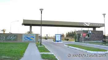 Seis proyectos del CONICET Santa Fe seleccionados y financiados para luchar contra la pandemia - Telefe Santa Fe