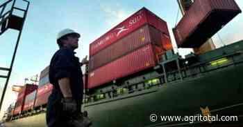Santa Fe organiza jornada informativa para fomentar el comercio con países asiáticos - AgriTotal