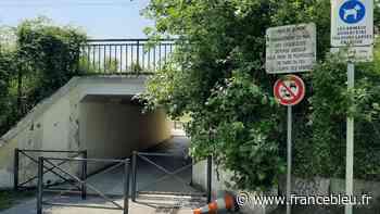 Domont : une pétition contre les quads et les motos au parc des coquelicots - France Bleu