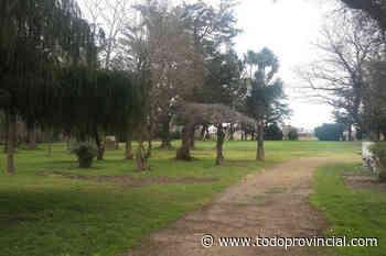 Conmoción en Tres Arroyos: encontraron un feto humano tirado en un parque - Todo Provincial
