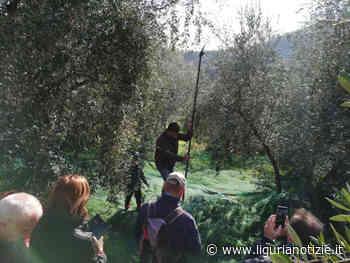 Alla scoperta dell'entroterra di Andora - Liguria Notizie