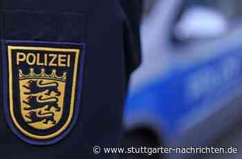 Rettungseinsatz in Tamm - Polizei rettet Hund aus heißem Auto - Stuttgarter Nachrichten