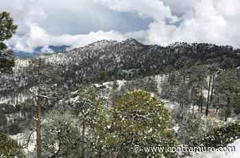 No se descarta nuevo volcán en región Parque Nacional Pico de Tancítaro - ContraMuro