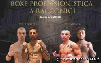 Incontri di boxe professionistica in programma a Racconigi - Il carmagnolese