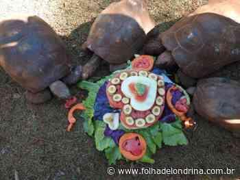 Zoo de Cascavel comemora o Dia dos Namorados - Folha de Londrina