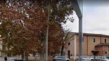 Trecate, donati nuovi alberi - Novara Today
