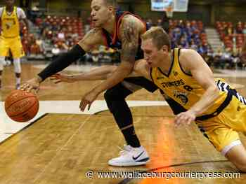 Northlands on the way out, but Edmonton Stingers here to stay - Wallaceburg Courier Press
